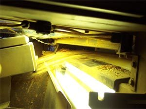 Blue, red and infra-red lasers scan for defective peanuts and remove them from the final product stream